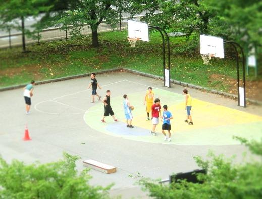 ミニチュアバスケ
