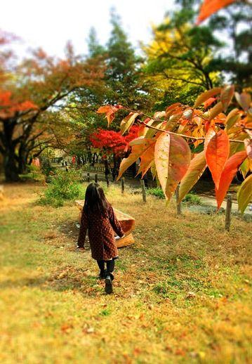 11月の上田公園 (3)