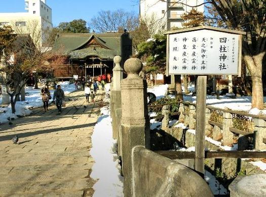 長野県松本市大手3-3-20_四柱神社_松本式狛犬 (4)