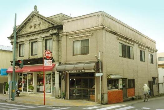 茨城県石岡市国府3丁目_すがや化粧品店と中村ラジオ店 (2)