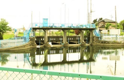 行田市_斎条堰大和橋 (4)
