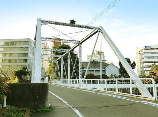 出島橋のコウモリ (3)