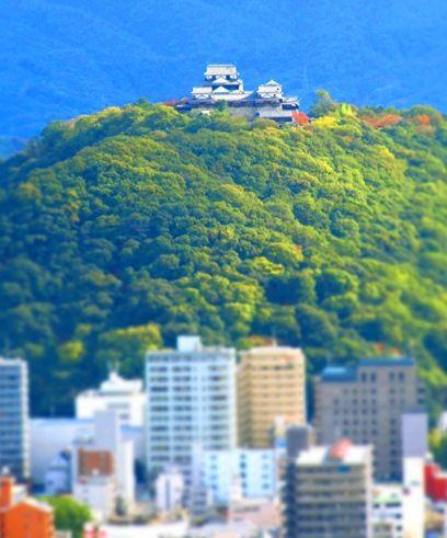 201111愛媛_こどもの城 (4)