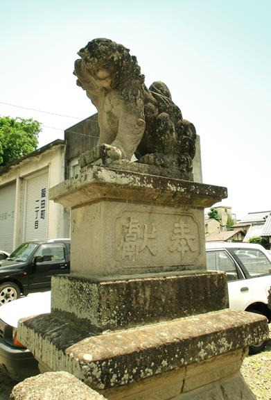 長野県松本市深志3丁目_富士浅間神社の狛犬 (2)