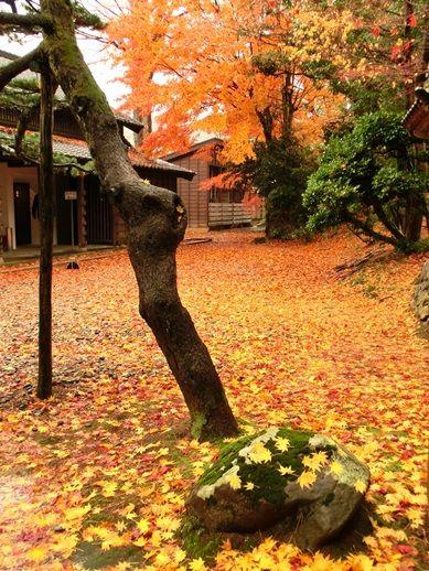 飯塚邸 (2)