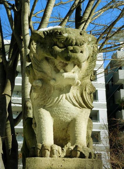 長野県松本市大手3-3-20_四柱神社_松本式狛犬 (5)