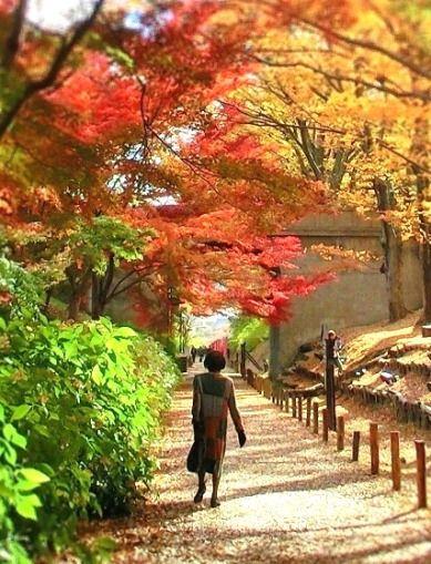 11月の上田公園 (6)