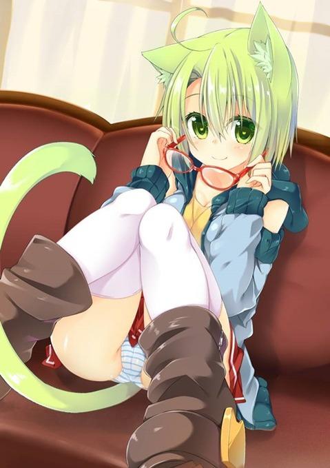 猫耳が可愛い女の子の二次エロ画像① 100枚-030