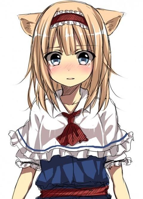 猫耳が可愛い女の子の二次エロ画像② 100枚-037