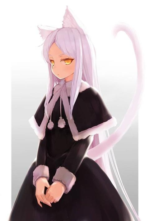 猫耳が可愛い女の子の二次エロ画像① 100枚-021