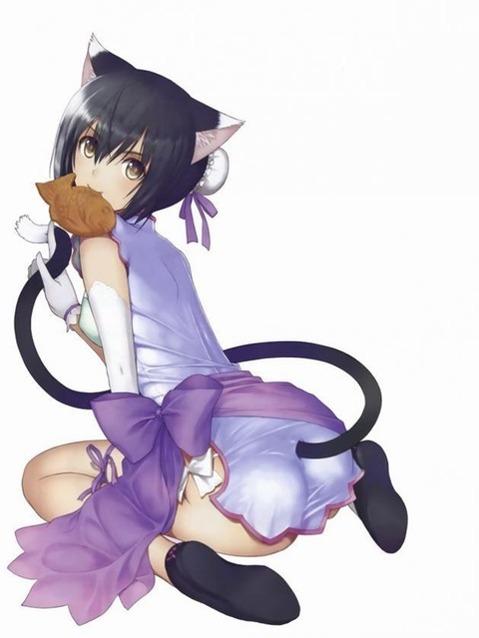 猫耳が可愛い女の子の二次エロ画像⑤ 100枚-095