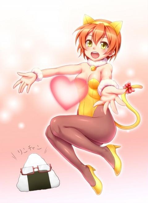 猫耳が可愛い女の子の二次エロ画像① 100枚-044