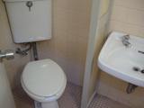 学校トイレ風洗面所もあり
