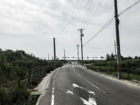 3 荒浜の道