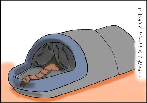 猫用ベッド4-2