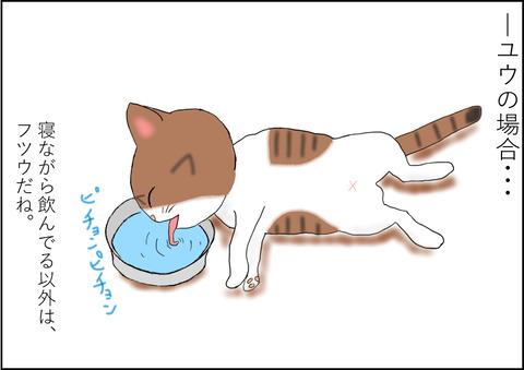 水の飲み方 ユウ