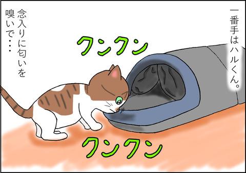 猫用ベッド1-2