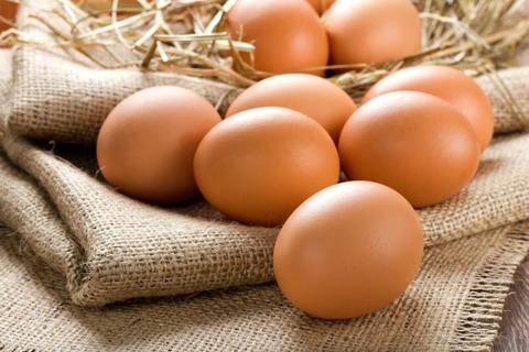 卵の食べ過ぎは体に悪い?今では食べて良い回数も定められている?