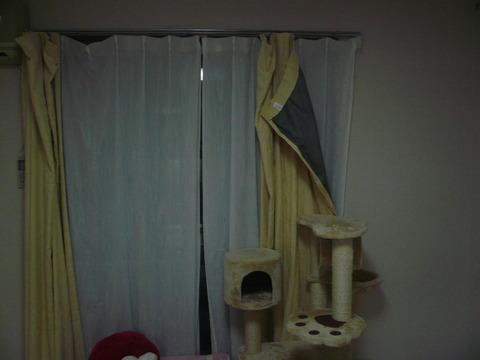 16カーテンが!1