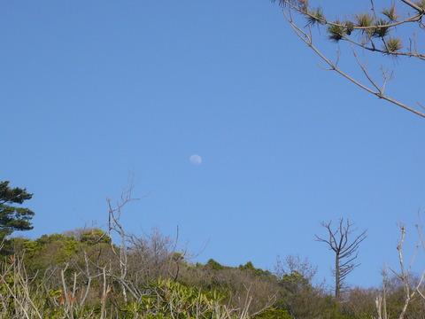 22春の海(月)