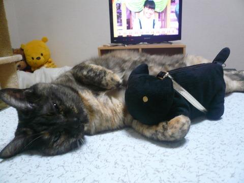 23黒猫さんと一緒2