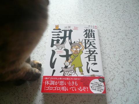 8猫医者1