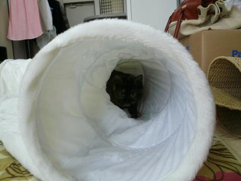 3トンネル1