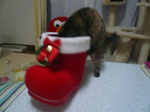 24クリスマスプレゼント6