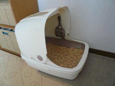 11エリザベス・サビィ用トイレ