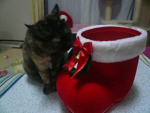24クリスマスプレゼント5