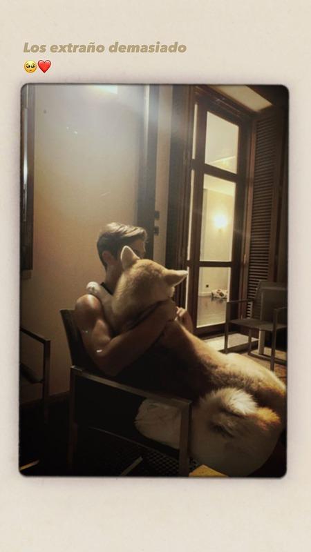 """◆画像◆すでに""""わさお""""級?ディバラさん家の秋田犬、むっちゃデカくなってて草"""