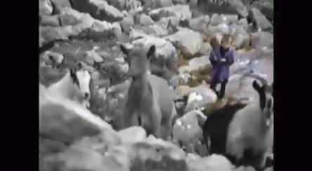 ◆お宝動画◆クロアチアの英雄ルカ・モドリッチは5歳の時羊飼いだった!当時のTV番組に偶然映像が残る