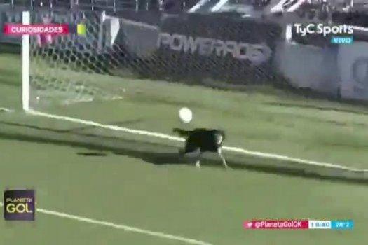 ◆南米珍◆アルゼンチン3部でGKの酷いやらかしを犬救う!ゴールライン上で奇跡的なビッグセーブ!