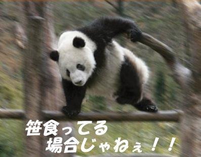 ◆悲報◆ケイスケ・ホンダ所属ボタフォゴの本部にサポーター乱入!