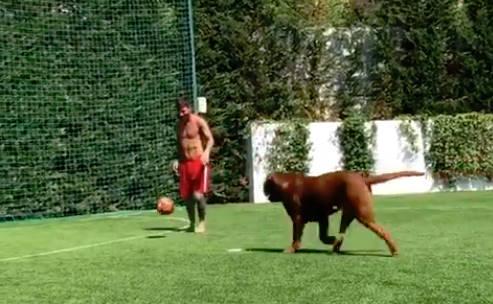 ◆動画小ネタ◆世界一のフットボールプレーヤー、レオ・メッシが飼い犬とサッカー対決した結果www