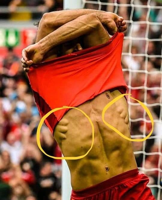 ◆画像◆クリロナさんの脇の筋肉が発達しすぎて後ろから抱きしめられてるようにしか見えない件www
