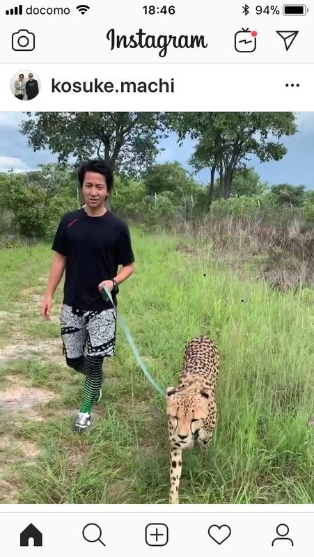 ◆画像◆元マリノス、中町公祐の猫散歩in ザンビアがワイルドすぎると話題に!