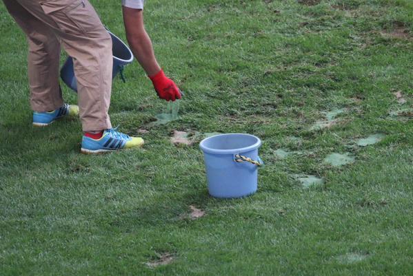 ◆悲報◆ノエビアスタジアムの芝、緑の粉でごまかした疑惑