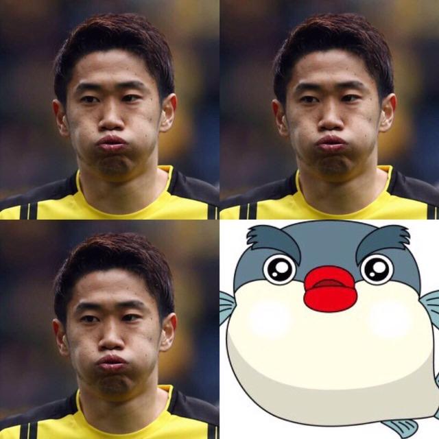 ◆画像◆香川真司選手、自分の表情と河豚を比べて自虐(´・ω・`)