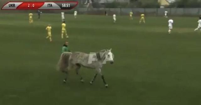 ◆悲報◆ウクライナvsイタリアのブラインドサッカーのピッチに馬と犬2匹が乱入して大混乱!