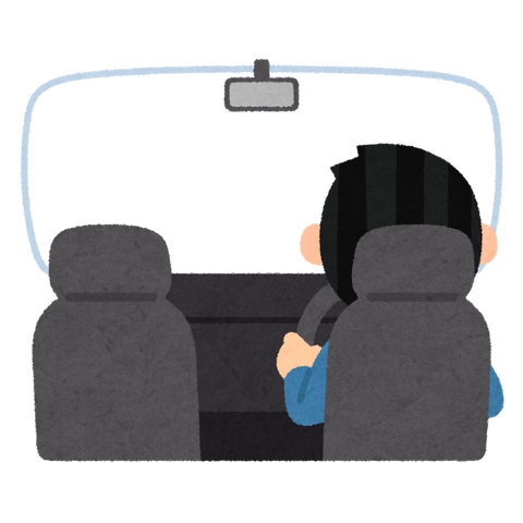 car_driver_inside_frame