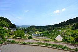 Rice_Terrace_in_Kumenan_Town