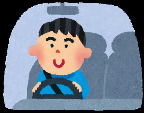 car_driving_man