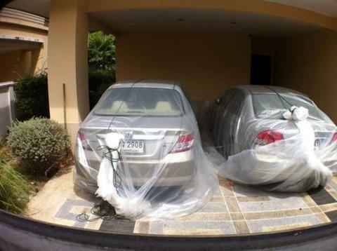 【日本はもう亜熱帯になった!?】東南アジアの知恵を学ぼう、大雨で車が壊れない方法とは?