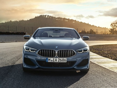 BMW-8-Series_Coupe-2019-1600-16