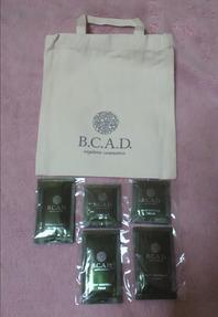編集_BCAD