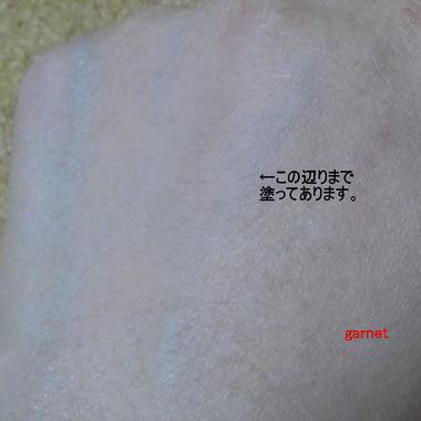 編集_編集_IMGP2744