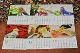 カレンダー発売4b