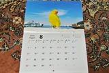 カレンダー発売2f