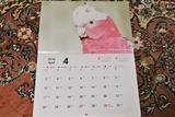 カレンダー発売2c